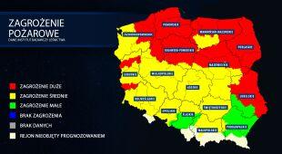 Wysokie zagrożenie pożarem w polskich lasach