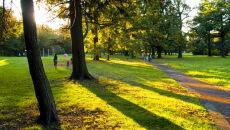 Prognoza pogody na weekend: wreszcie do Polski wraca słońce